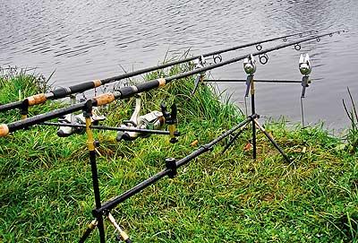 """...Брянской области по ловле рыбы на донную удочку способом  """"квивертип """"."""