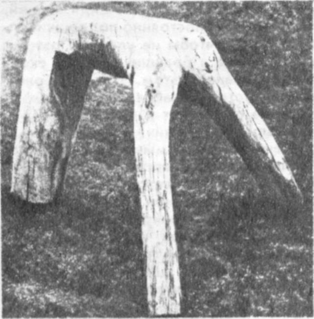 «Тугыр» — подставка, на которой птица сидит в вольере или во дворе. Изготавливается обычно из изогнутых стволов деревьев. Верх подставки обивается кошмой. На ней закрепляется кольцо, к которому привязывают путцы. Существует множество форм подставок.
